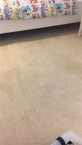 carpet cleaning stain removal service
